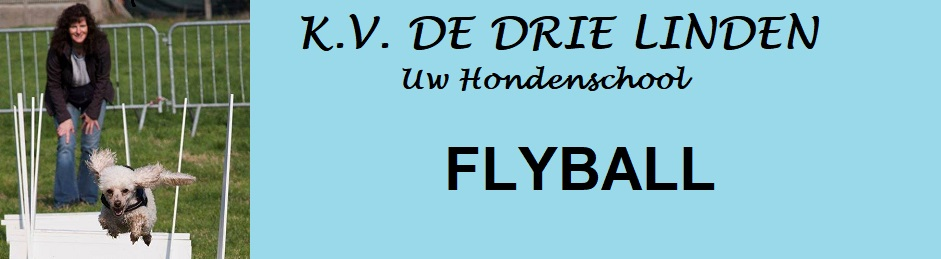 KV De Drie Linden